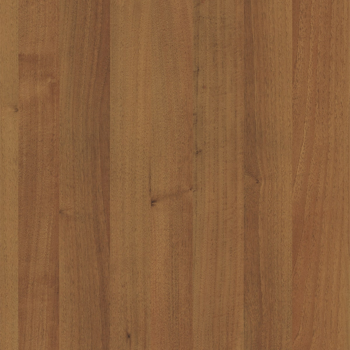 HF1881 Nußbaum