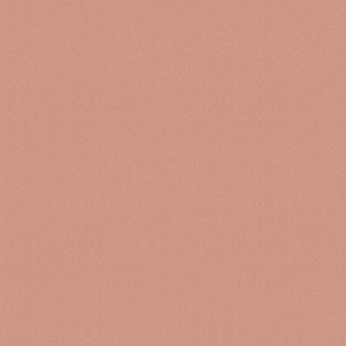 HF1941 VL Tender Rose